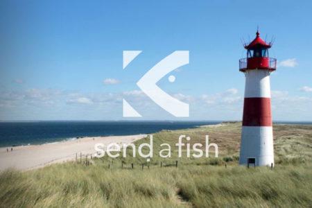 send-a-fish